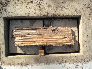 Termite damage in untreated control